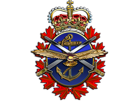 Canadian Fallen Soldier - Warrant Officer Class II FIELDS